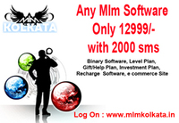 MLM Customize Software development