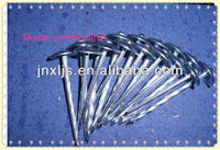 Corrugated Roofing Nails