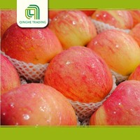 fresh fuji apples export to all over the world with CE certificate