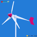 High efficiency 220v 5kw wind turbine price