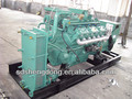 Shengdong Natural Gas Generator from 20kW to 2200kW