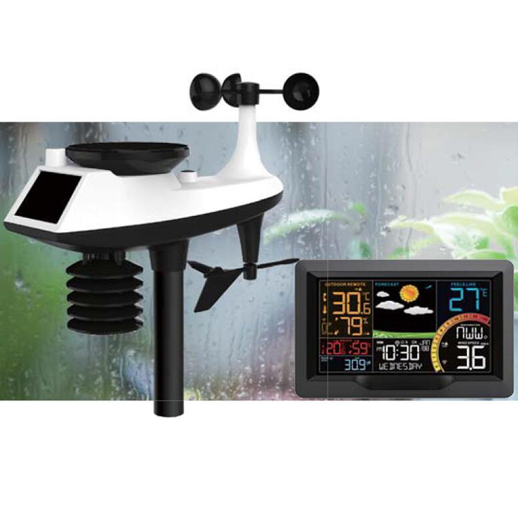 Professional LED back light display weather station with rainfall and wind speed