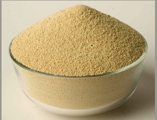 Soybean Meal from Brazil in containers