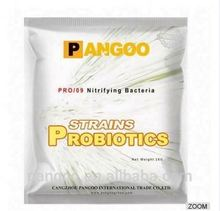 Cheap live nitrifying bacteria for fish tank
