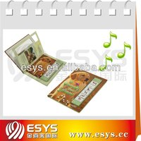 Sound penel,sound board with funny pictures for children book, used for children's pre-school education