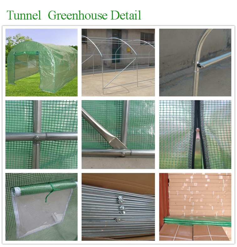 Professional Factory High Quality Aluminum PC Garden Greenhouse