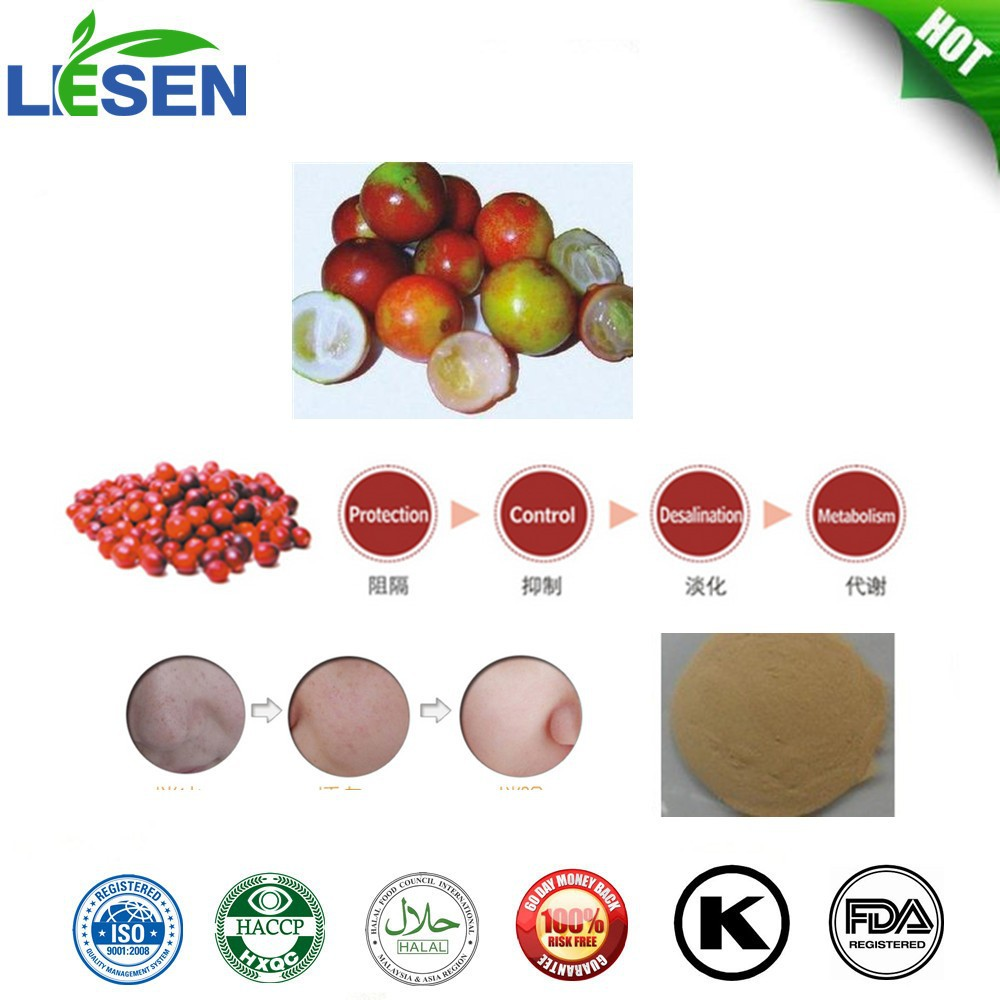 Natural Organic Best Quality Camu camu Fruit Powder 100 times Content of Vitamin C than lemon