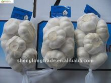 Shandong jixiang pure white garlic