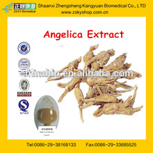 Hot Sale dong quai extract