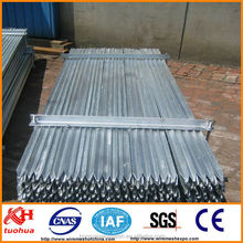 hot dip galvanized star picket