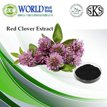 Gold Supplier Red Clover Extract 10:1 ratio product