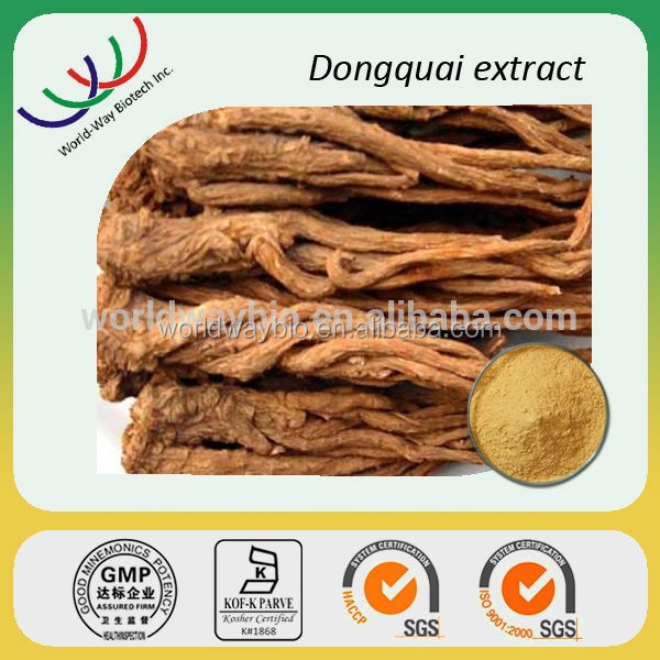 Benefit to Qi Dong quai extract /dong quai extract powder with 1% Ligustilide by HPLC /HACCP FDA Kosher certificated
