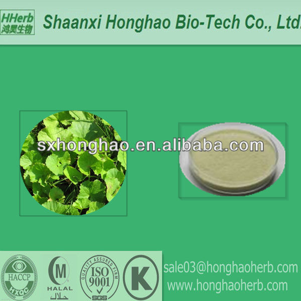 Standardized for NLT20%- 40% Total Triterpenes Gotu Kola Dried Extract