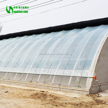 Plastic Sheet Greenhouse Cover/ Plastic Corrugated Sheet For Greenhouse