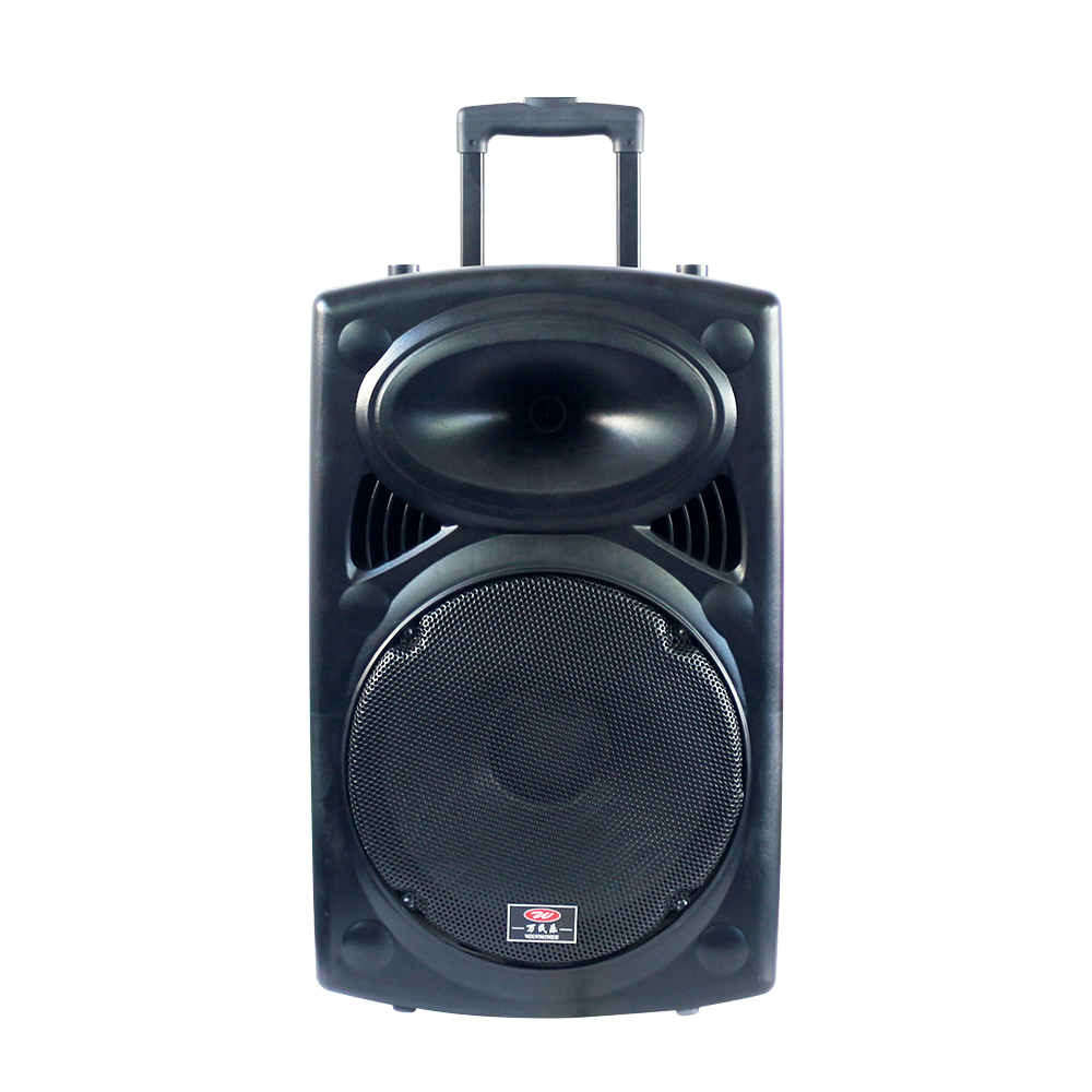 Portable Big Power 12 Inch wholesale china import speaker with usb