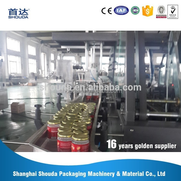 Factory price full automatic servo motor Drive filling machine Onion jam production line