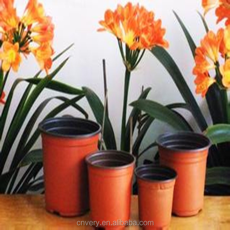 garden nursery flowers pots cheap flower pots plastic