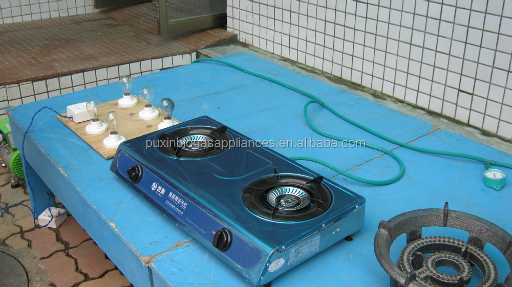 ACME Chinese Cooking Stove Double Burner Biogas Stove