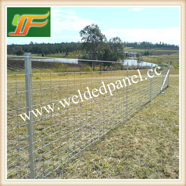China Factory Supply Galvanized Sheep and Goat Fence For Australia Market