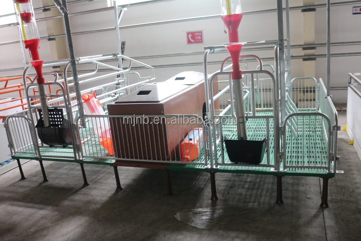 animal husbandry equipment farrowing stall for pigs