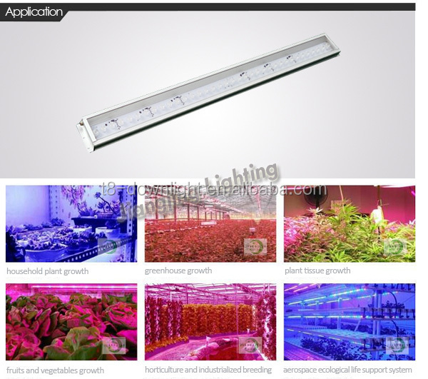 full spectrum led grow lights 100w led VS 1000W HPS super power high for HYDROPONIC