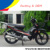 mini gas motorcycles for adults