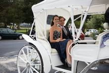 belgian draft horse drawn Cinderella Wedding Horse carriage for sale