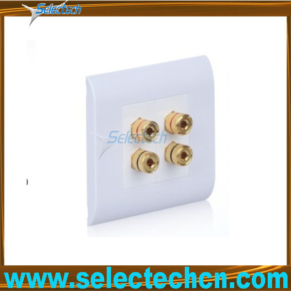 SE-BW-01 USB wall plate with banana connector
