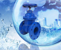 6 inch Water Gate Valve with prices