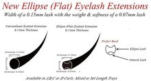 Factory Direct Ellipse Flat False Eyelash Extensions Extremely Soft Lashes