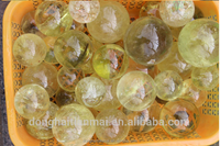 Natural Citrine Quartz Crystal Healing Ball / Water Clear Crystal Ball Sphere WHOLESALE/ Rock Crystal Ball Gift