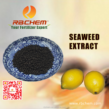 RBCHEM Granule Natural Seaweed Extract Organic Fertilizer