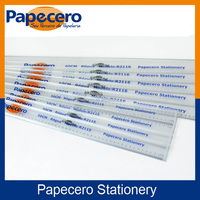 Papecero Transparent Parallel Scale Plastic Ruler