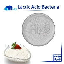 GMP Factory Supply Probiotic LAB Lactic Acid Bacteria for yogurt Additives With Best Price