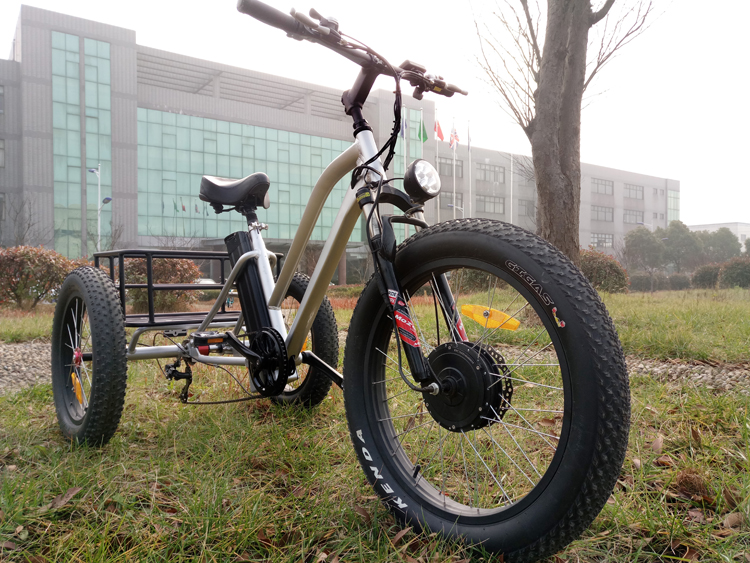 48V 500W Fat Tire Cargo Tricycle,Three Wheel Electric Tricycle Lithium Battery LCD Display with Pedal