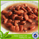 China Yichang Canned broad beans 397g