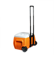 Giwox 28L Patro Wireless Cooler Box with Trolley, 4400mAh Power bank