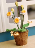 Doll house Mini Flower Daffodil in pot OP020