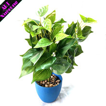 High Simulation Decoration Pig Heart Leaves Artificial Ficus Bonsai For Home