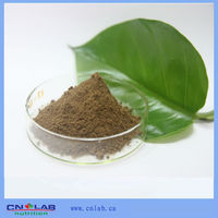 Chinese Factory Supply Water Extract Pure Natural Lucid Ganoderma Polysaccharide Extract Powder