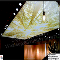 Newest good quality High quality suspension system 2017 Hot and Cheapest PVC Transparent Glossy UV Printed Stretch Ceiling Film