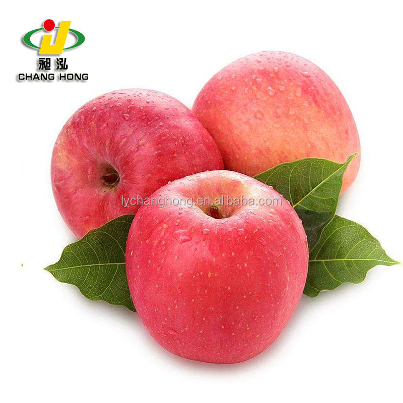 [HOT] Fuji Apple/fresh Apple for sale