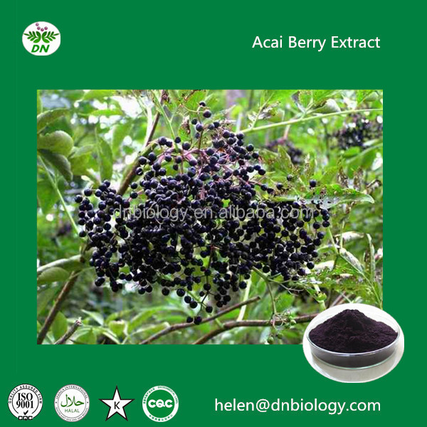 Natural pure acai berry extract,acai berry powder, natural acai berry