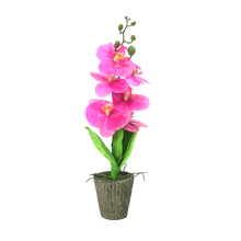 Factory Cheap Hot Selling 47cm Plastic Artificial Butterfly Orchid Bonsai for Home Decoration