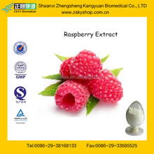 GMP Factory supply 100% Natural Raspberry Ketone Made in China