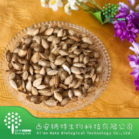 Natural Pumpkin Seed Extract Fatty Acid 25%