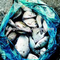 Heavy duty plastic packaging bag for fish
