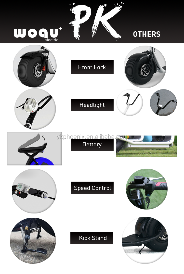 Popular 1200w fat tire electric scooter city coco scooter hoverboard (Q3-7212)