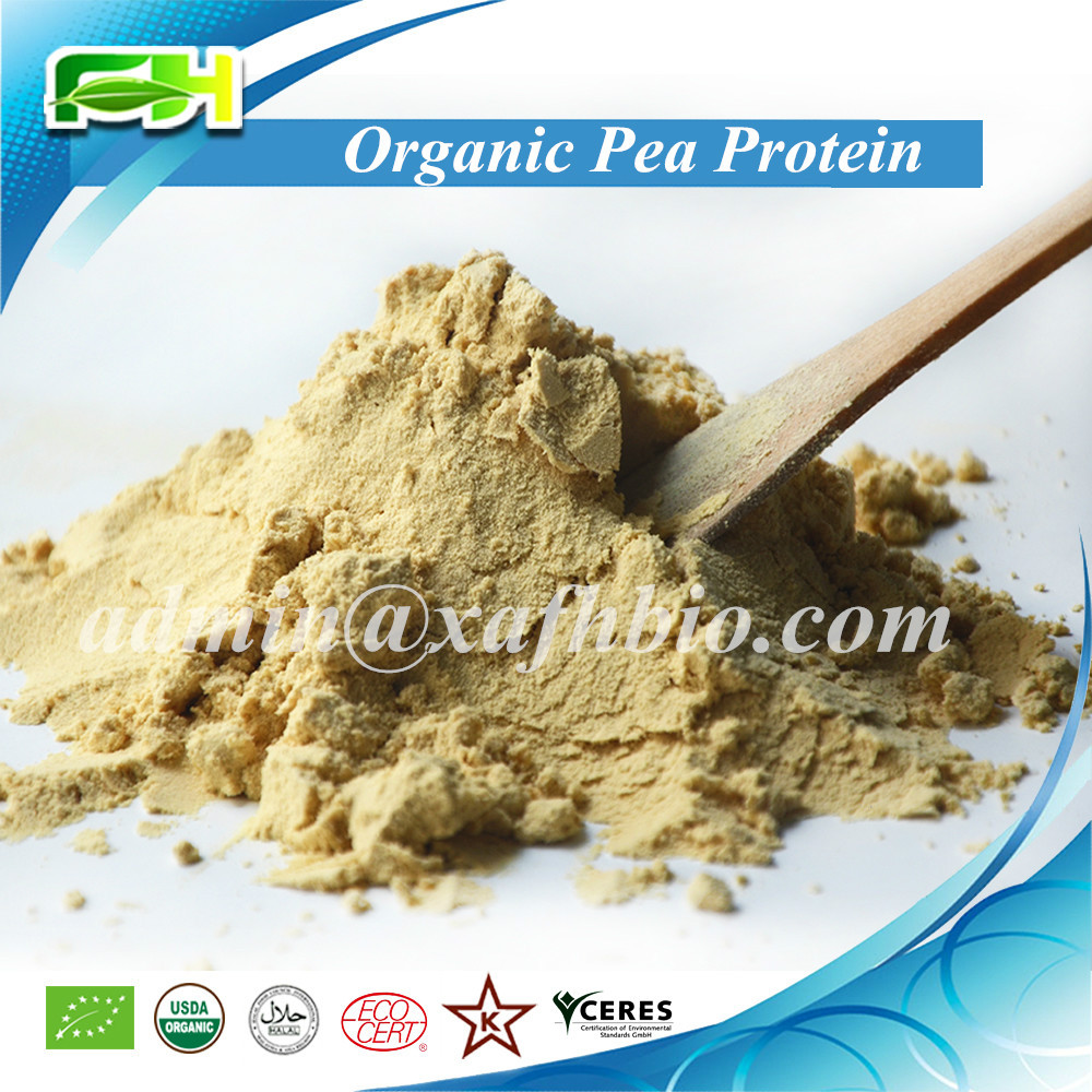2016 New Non-GMO Certified Organic Pea Protein Powder