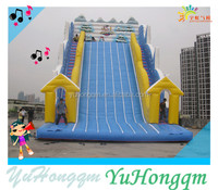 Factory Price Slide Inflatable Snow Theme Inflatable Castle Slide For Kids Outdoor Playground